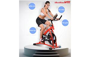 http://thethaoviet.com.vn/san-pham/xe-dap-tap-spin-bike/