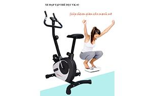 -Xe đạp tập thể dục Viking VK-02
