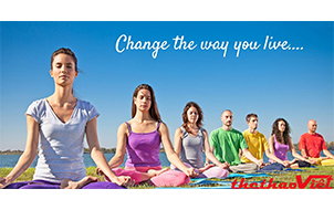 Nên tập luyện Yoga mỗi ngày vào buổi sáng