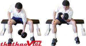 Bài tập ở tư thế ngồi rất tốt cho việc phát triển cơ tay