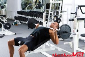 Tập luyện hiệu quả với ghế đẩy tạ Xuki