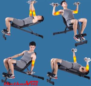 Bài tập tạ tay với ghế tập Gym đa năng JN-Y09